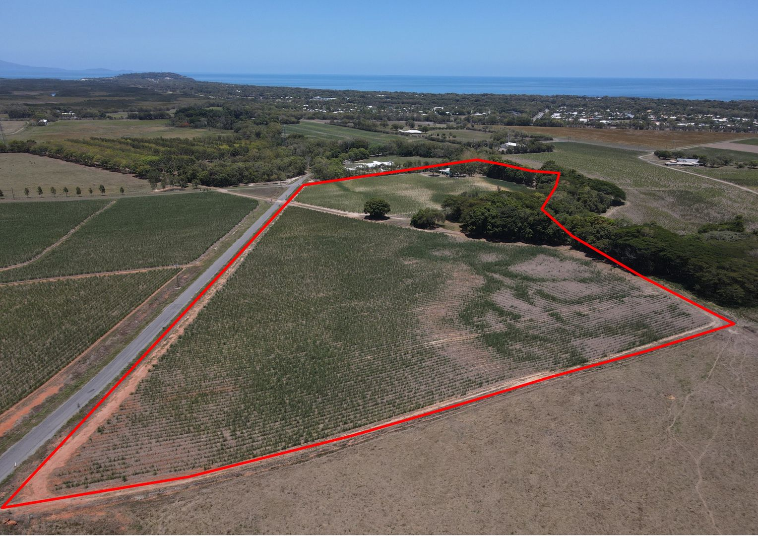 59 Crees Rd, Craiglie QLD 4877, Image 1