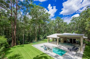 Picture of 13 Glen Eaton Street, Eatons Hill QLD 4037