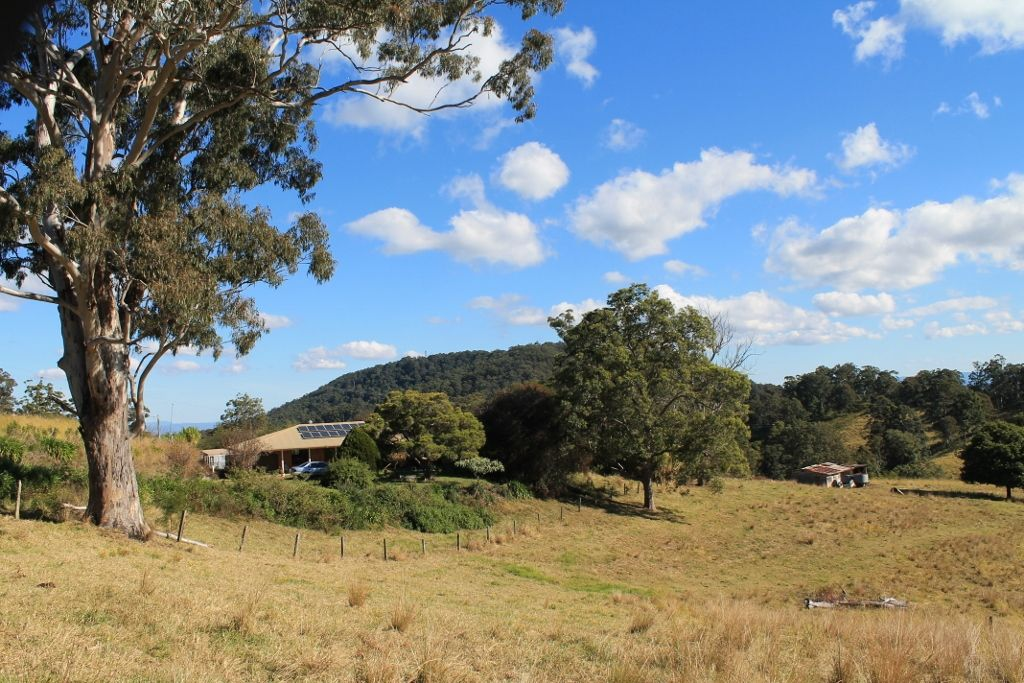 525 Homeleigh Road - Homeleigh, Kyogle NSW 2474, Image 0