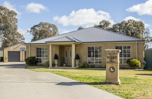 15 JAKE MILLER PLACE, Young NSW 2594