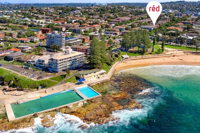 Picture of 5/113 Oaks Avenue, DEE WHY NSW 2099