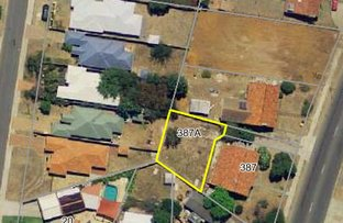 Picture of 387A Carrington Street, Hamilton Hill WA 6163