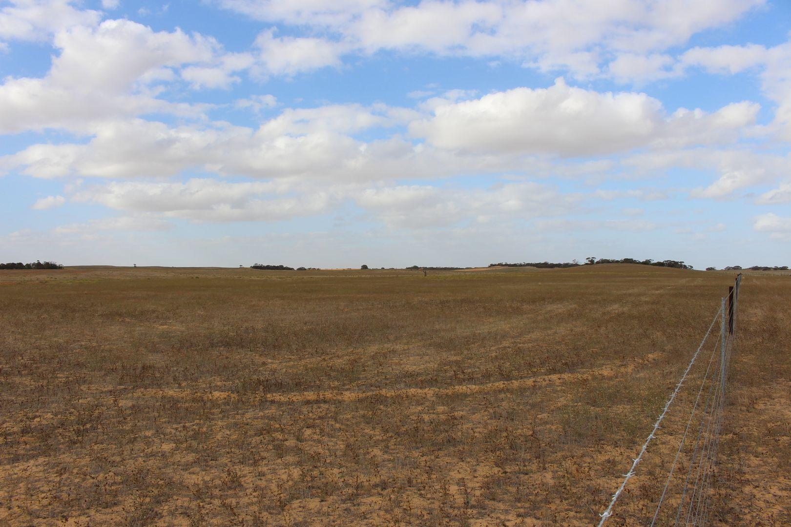 lot 5 Sandalwood Road, Sandalwood SA 5309, Image 2