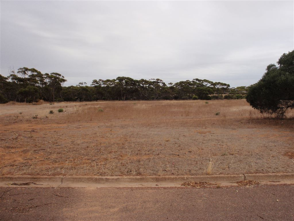 87 Hayman St, Minnipa SA 5654, Image 0