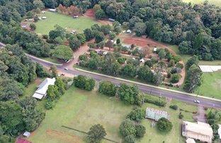 Picture of Park Avenue, Malanda QLD 4885