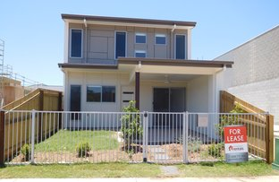 138 Sunshine Cove Way, Maroochydore QLD 4558