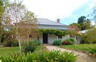 Picture of 59 Park Terrace, Bordertown SA 5268