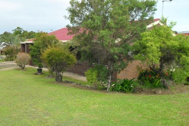 Picture of 17 Annette Street, TINGALPA QLD 4173
