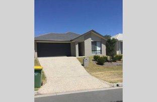 Picture of 29 Flora Terrace, Pimpama QLD 4209