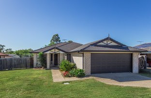 Picture of 24 Sarah Drive, Yamanto QLD 4305