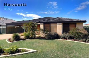 Picture of 6 Woodquay Avenue, Australind WA 6233