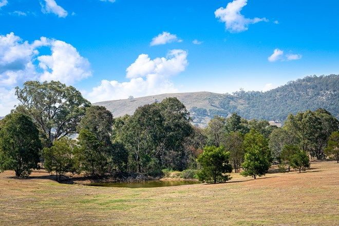 Picture of 342 Nandi Road, CANYONLEIGH NSW 2577
