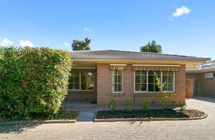Picture of 1/27A Barry Road, Oaklands Park SA 5046