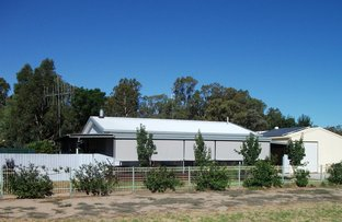 Picture of 69 Forest Street, Koondrook VIC 3580