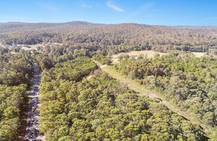 Picture of lot 130 Princes Hwy, Mogo NSW 2536