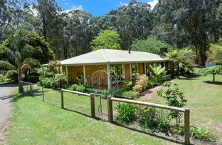 Picture of 1275 Little Yarra Road, Gilderoy VIC 3797
