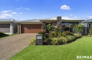 Picture of 3 Centenary Court, Warner QLD 4500