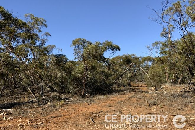 Picture of 21 Hundred Line Road, PERPONDA SA 5308