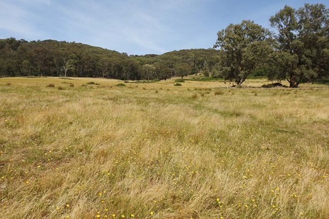 Picture of BOHO SOUTH VIC 3669