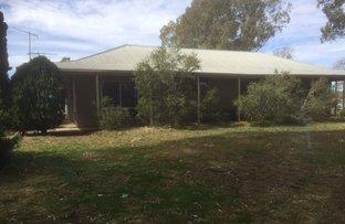 Booligal Road, Hay NSW 2711