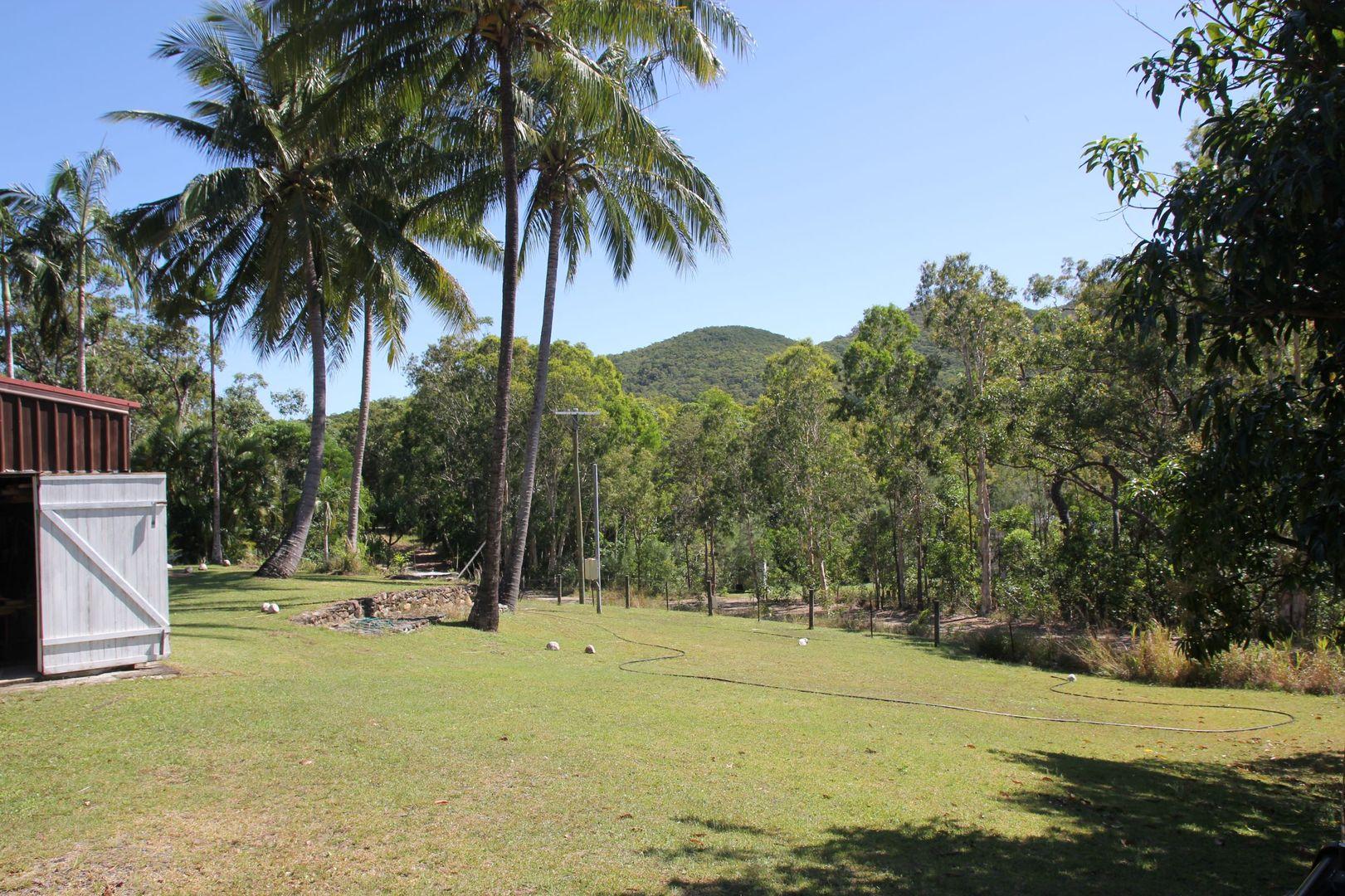 22 Cedar Road, Rossville QLD 4895, Image 1