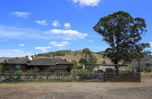 Picture of 2416 Carrowbrook Road, Singleton NSW 2330