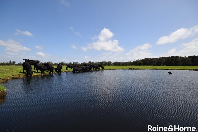 Picture of Lot 57 Greenwell Point Road, PYREE NSW 2540