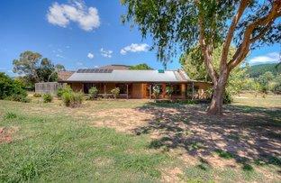 Picture of 3 Tewksbury Court, Porepunkah VIC 3740