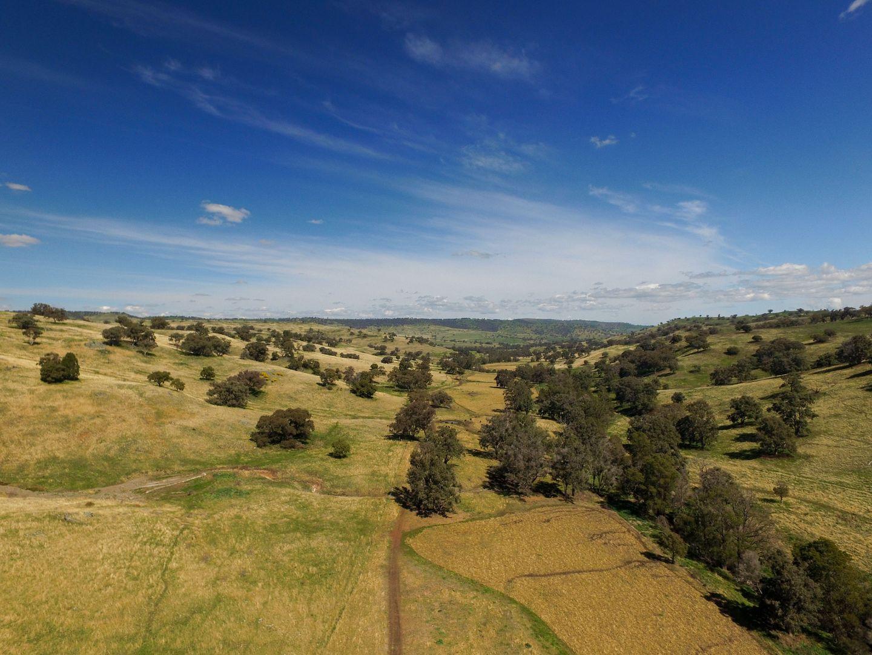 1479 Coolah Creek Road, Coolah NSW 2843, Image 2