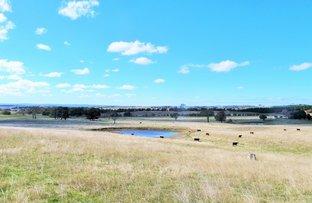 Spring Range Road, Springrange NSW 2618