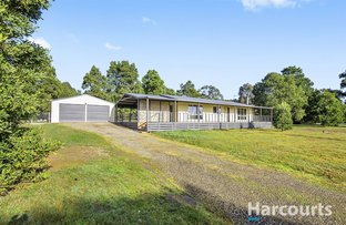 Picture of 100 Melaleuca Road, Enfield VIC 3352