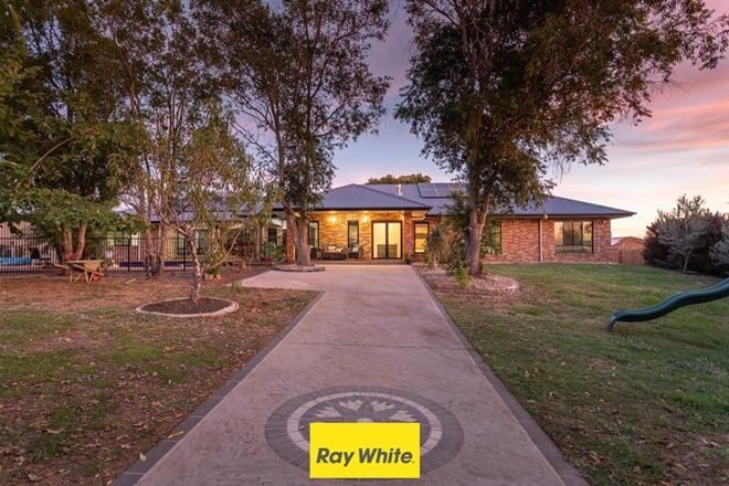 Picture of 28 Bush Pea Place, KURABY QLD 4112