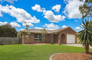 Picture of 61 Kyeema Crescent, Bald Hills QLD 4036