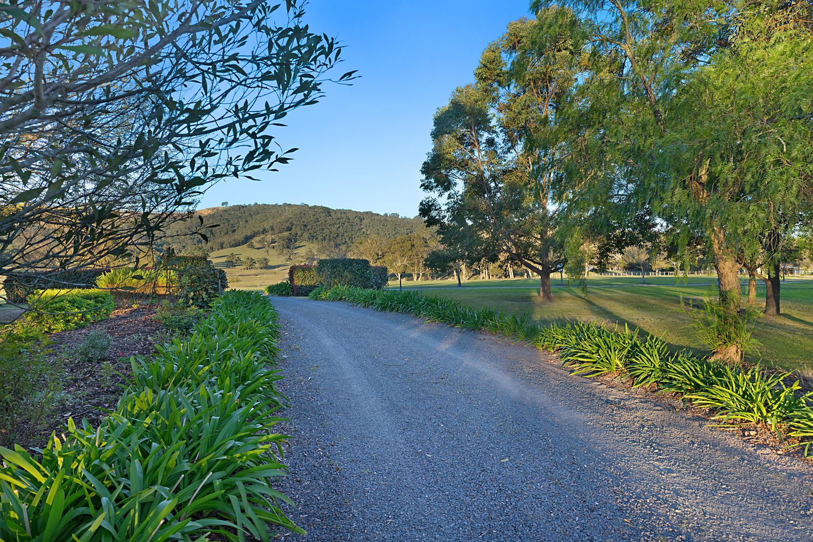 200 Torryburn Road via,, Paterson NSW 2421, Image 2