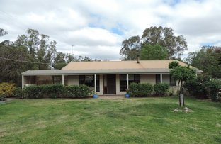 Picture of 6 MAUNDER STREET, Koondrook VIC 3580