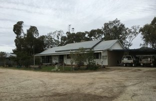 Picture of 196 Kervin's Road, Cohuna VIC 3568