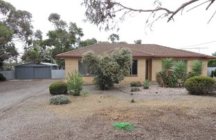 Picture of 40 Mawson Avenue, Tailem Bend SA 5260