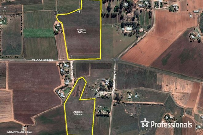 Picture of 486, 486A, Trioda Street & 479b Krake Road, RED CLIFFS VIC 3496