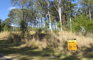 Picture of Lot 17 Sherwood Creek Road, Glenreagh NSW 2450