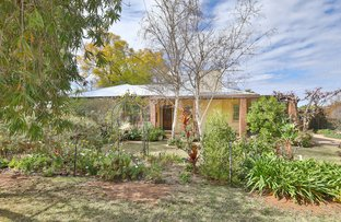 Picture of 5 Rowe Parade, Red Cliffs VIC 3496