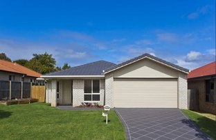 Picture of 17 Seaholly Crescent, Victoria Point QLD 4165