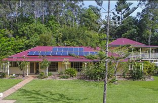 Picture of 17 Elvadale Place, Nunderi NSW 2484