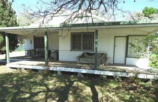 Picture of 10 Burton St, Warren NSW 2824