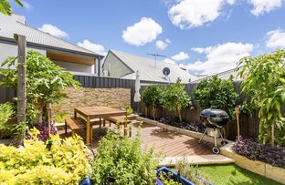 156 Holbeck Street, Doubleview WA 6018