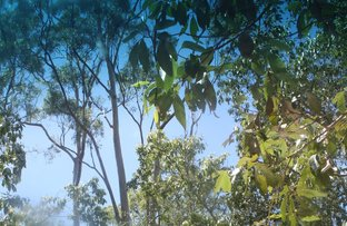 Picture of Bundaberg Lowmead rd, Yandaran QLD 4673