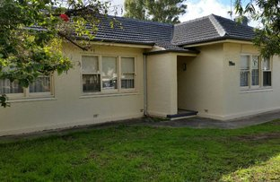 Picture of 29 English Avenue, Clovelly Park SA 5042