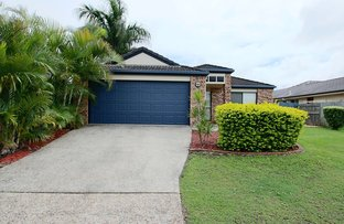 8 Links Avenue, Meadowbrook QLD 4131