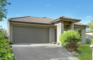 Picture of 33 Red Cedar Street, Sippy Downs QLD 4556