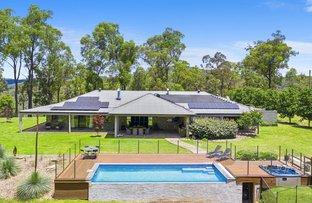 Picture of 228 Yango Creek  Road, Wollombi NSW 2325