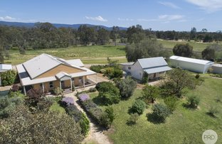 Picture of 175 High Street, Avoca VIC 3467
